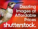 Shutterstock Over 20 millon stock photos