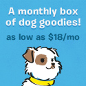 Barkbox - A box of dog goodies each month
