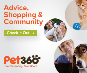 Pet360 Homepage