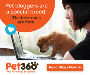 Pet360 Blogs